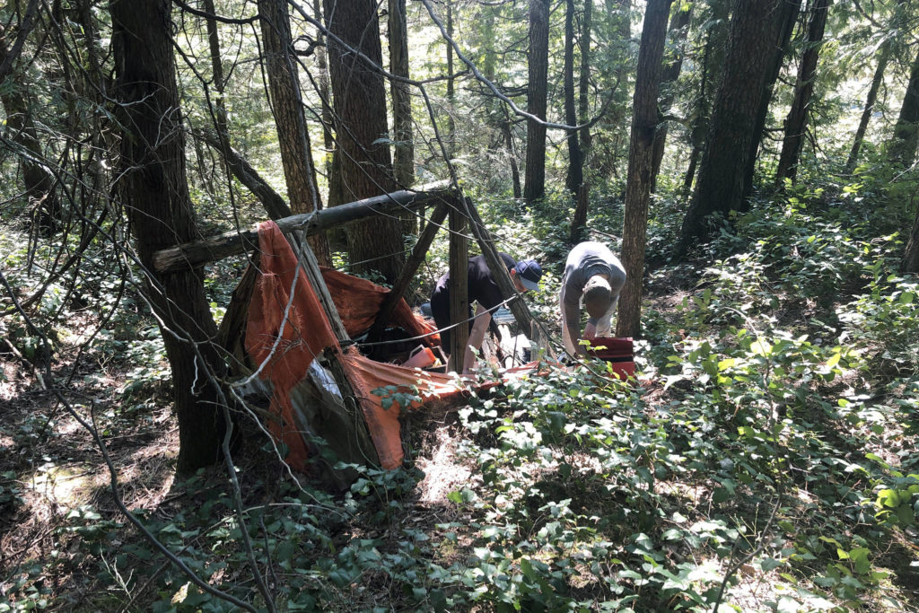 South Surrey hikers discover decades-old campsite hidden in Golden Ears Park - Abbotsford News