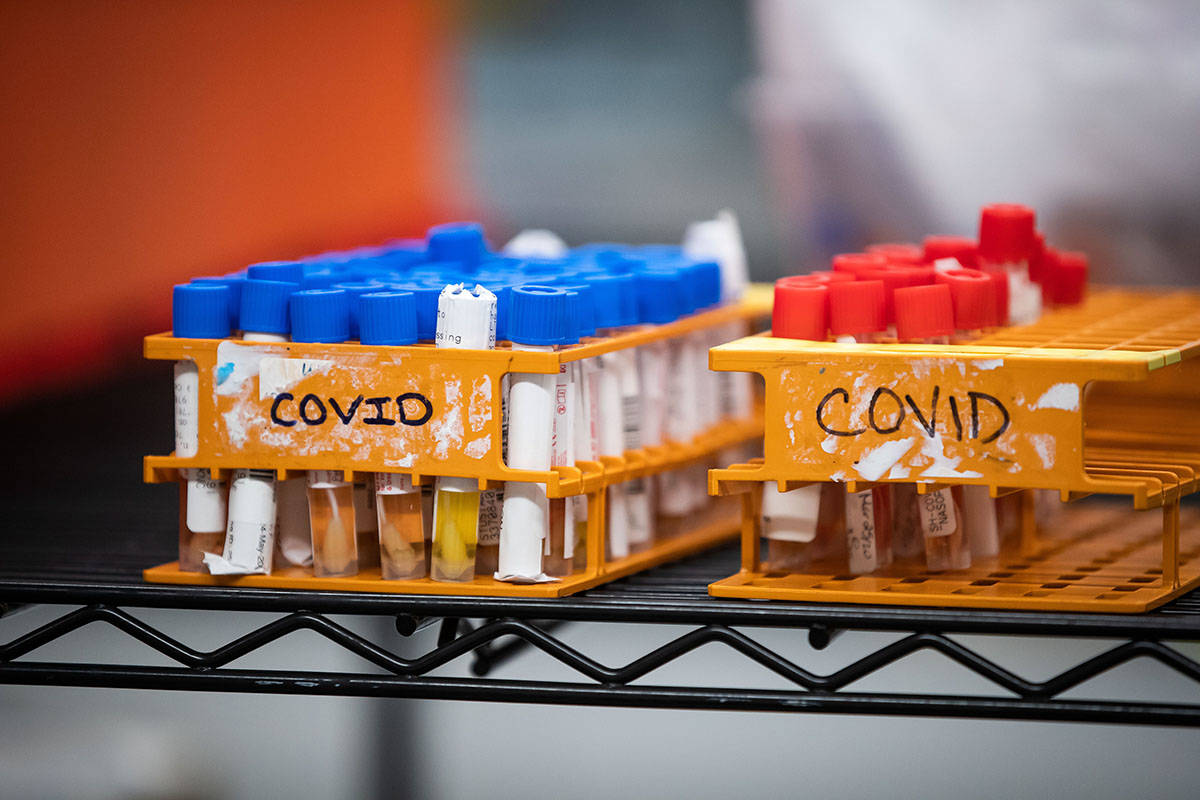 B C Opens Up Covid 19 Testing To Track Community Infections Abbotsford News